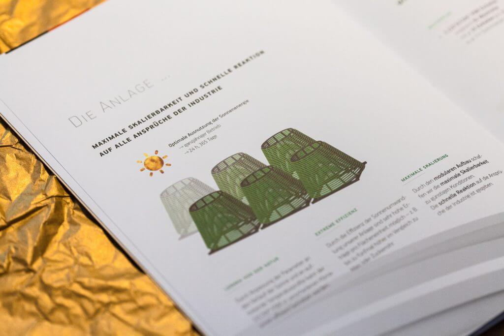 Das Grüne Gold - Detail Innenseite